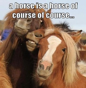 a horse is a horse of course of course...