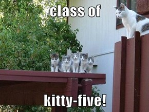 class of   kitty-five!