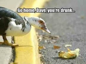 Go Home Dave