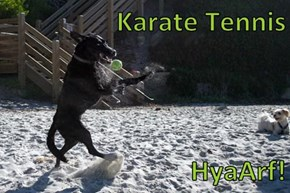 Karate Tennis  HyaArf!