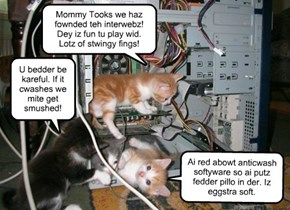 Mommy Tooks we haz fownded teh interwebz!  Dey iz fun tu play wid.  Lotz of stwingy fings!
