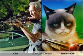 Clint  Totally Looks Like Tardar Sauce