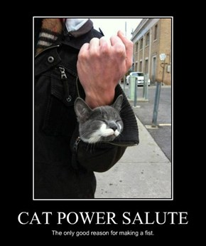 CAT POWER SALUTE