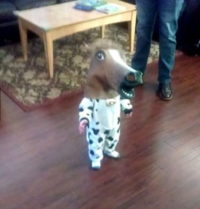 You're Never Too Young For Your First Horse Mask