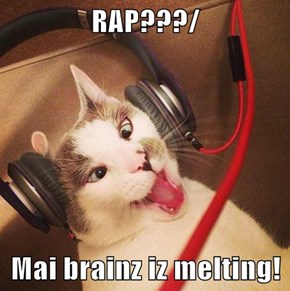 RAP???/  Mai brainz iz melting!