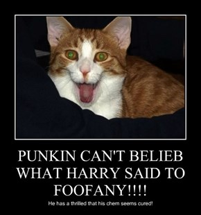PUNKIN CAN'T BELIEB WHAT HARRY SAID TO FOOFANY!!!!