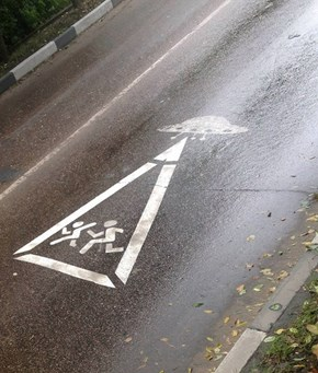 WARNING: Alien Crossing