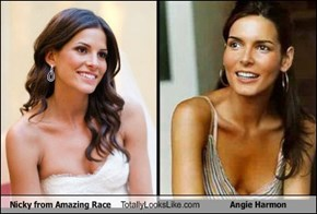 Nicky from Amazing Race Totally Looks Like Angie Harmon