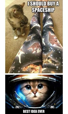 Major Tomcat