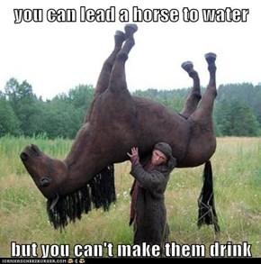Especially a Statue of a Horse