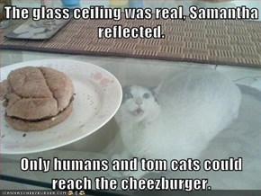 The glass ceiling was real, Samantha reflected.  Only humans and tom cats could reach the cheezburger.