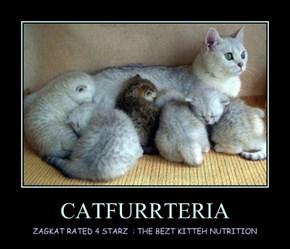 CATFURRTERIA