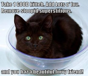 Take 1 GOOD kitteh. Add Lots o' luv. Remove stoopid superstitions.  and you haz a beautiful furry friend!
