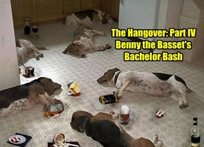 The Hangover: Part IV Benny the Basset's Bachelor Bash
