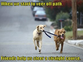 When we start to veer off path,  Friends help us steer a straight course.