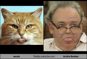 wuxie Totally Looks Like Archie Bunker