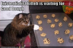 Existentialist kitteh is waiting for Good Dough