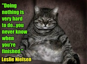 """Doing nothing is very hard to do...you never know when  you're finished."""