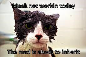 Meek not workin today  The mad is about to inherit