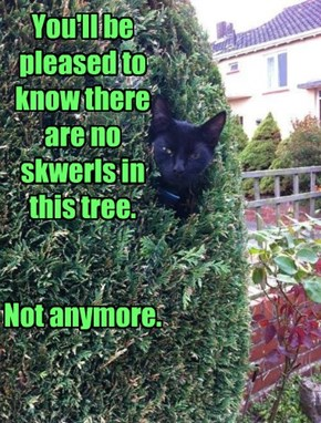 You'll be pleased to know there are no skwerls in this tree.   Not anymore.