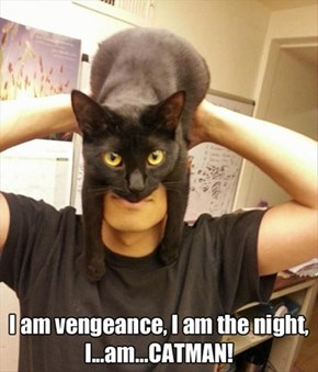If Cat Woman and Batman Got Together...