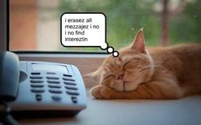 call screener