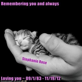 Remembering you and always  Loving you ~ 09/1/83 - 11/19/12