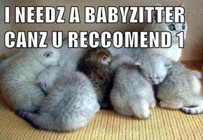 Yes, I can Recommend...ME!!!