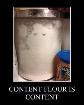 CONTENT FLOUR IS CONTENT
