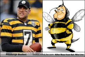 Pittsburgh Steelers Totally Looks Like Killer Bees from Sat. Nite Live