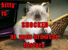 kitty                                    is   SHOCKED  at  your browser history
