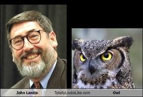 John Landis Totally Looks Like Owl