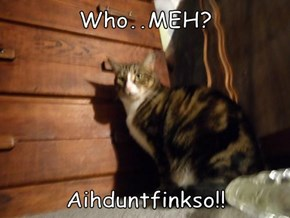 Who..MEH?  Aihduntfinkso!!