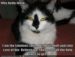 Why hello there....  I am the fabulous Lolly. I own Elizabuff and take care of her. Believe me, she needs all the help she can get!