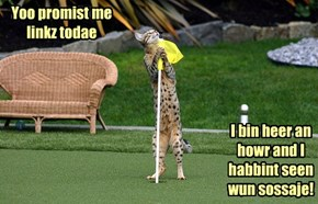 Golf...Itz Nawt Az Meaty Az Yoo'd Think.