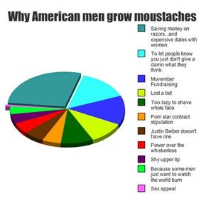 The Real Movember Reasons