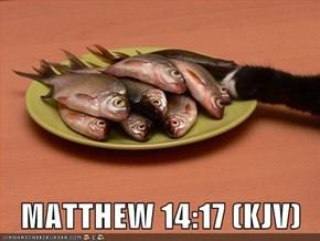 MATTHEW 14:17 (KJV)