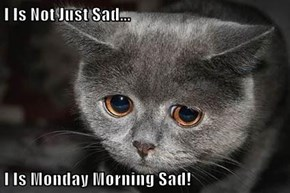 I Is Not Just Sad...  I Is Monday Morning Sad!