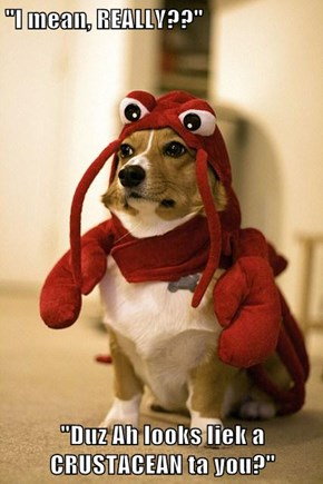 """I mean, REALLY??""  ""Duz Ah looks liek a CRUSTACEAN ta you?"""