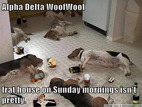 Alpha Delta WoofWoof  frat house on Sunday mornings isn't pretty.