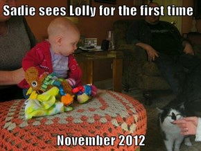 Sadie sees Lolly for the first time  November 2012