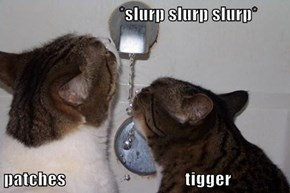 *slurp slurp slurp*  patches                                  tigger