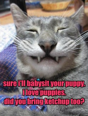 sure i'll babysit your puppy. i love puppies. did you bring ketchup too?