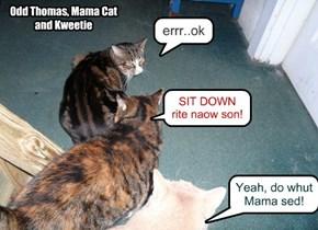SIT DOWN rite naow son!