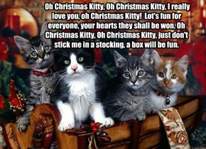 Oh Christmas Kitty, Oh Christmas Kitty, I really love you, oh Christmas Kitty!  Lot's fun for everyone, your hearts they shall be won. Oh Christmas Kitty, Oh Christmas Kitty, just don't stick me in a stocking, a box will be fun.