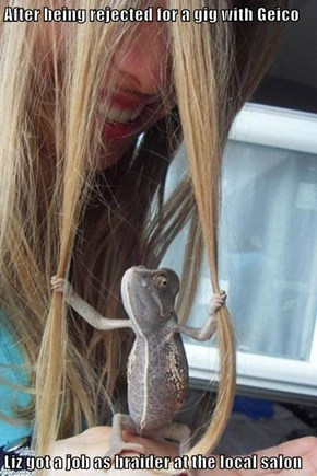 After being rejected for a gig with Geico  Liz got a job as braider at the local salon