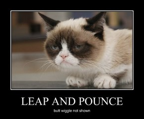 LEAP AND POUNCE