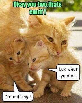 Okay you two,thats enuff !