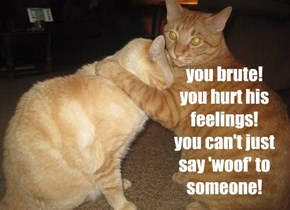 you brute! you hurt his feelings! you can't just  say 'woof' to someone!