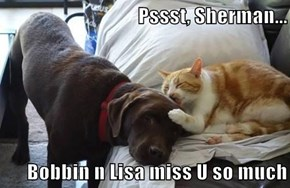 Pssst, Sherman...  Bobbin n Lisa miss U so much